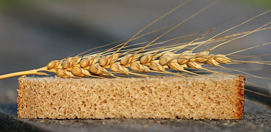 alimentatie sanatoasa cereale
