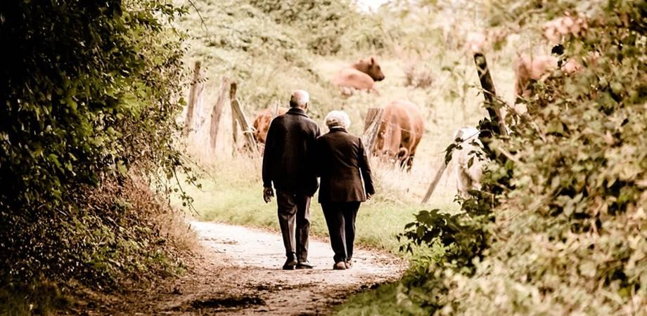 osteoporoza varsta