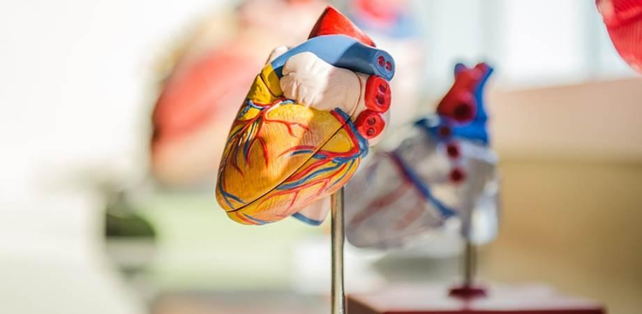 sanatatea inimii simptome