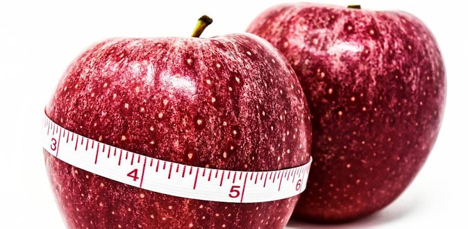 calorii si rata metabolica