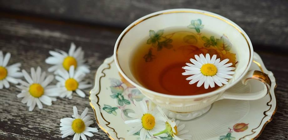 ceaiuri medicinale de musetel