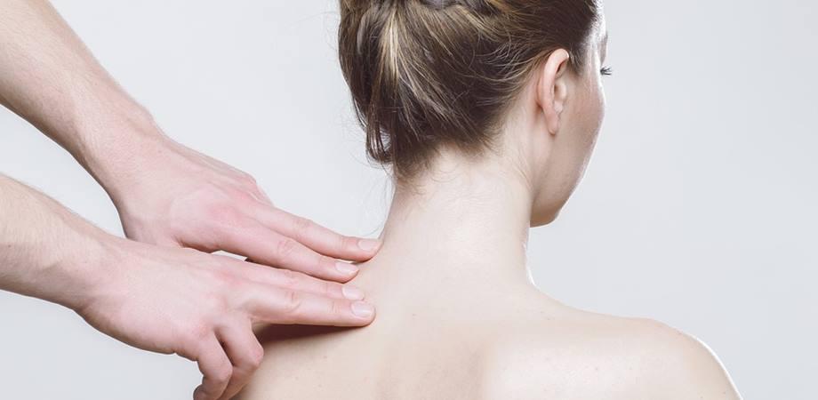 elongatiile vertebrale