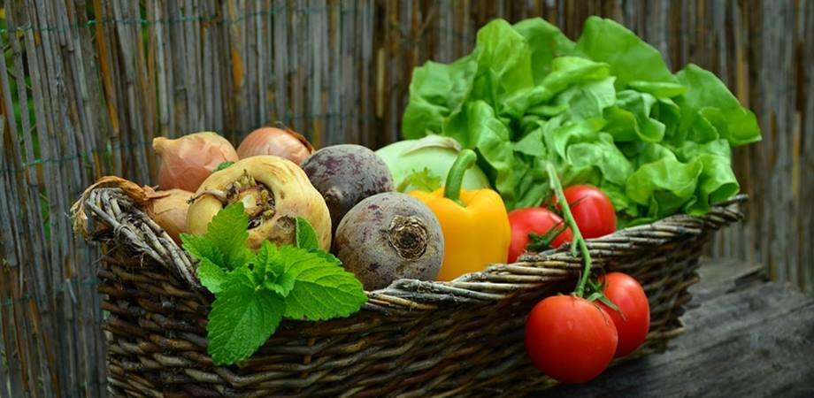 alimentatie sanatatea pancreatica