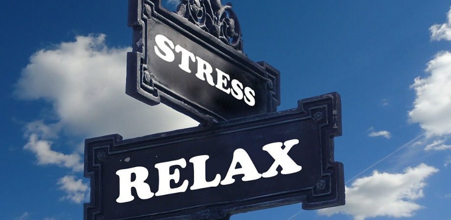 glanda hipofiza si stresul