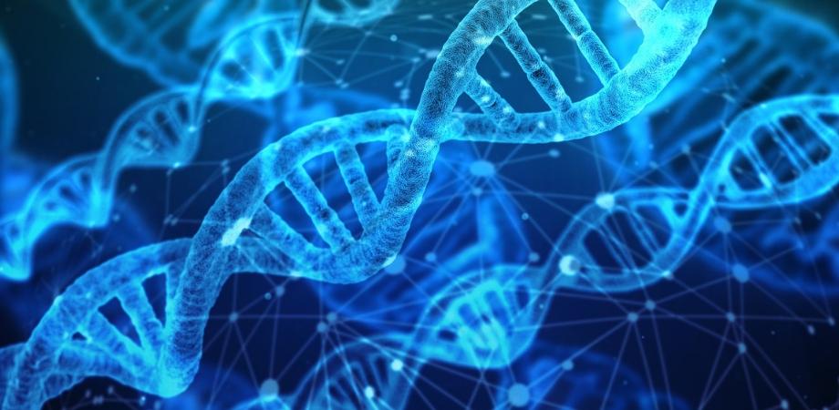 neoplazie si mutatiile ADN