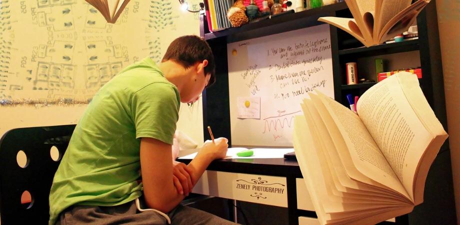 adolescenta si dezvoltarea intelectuala