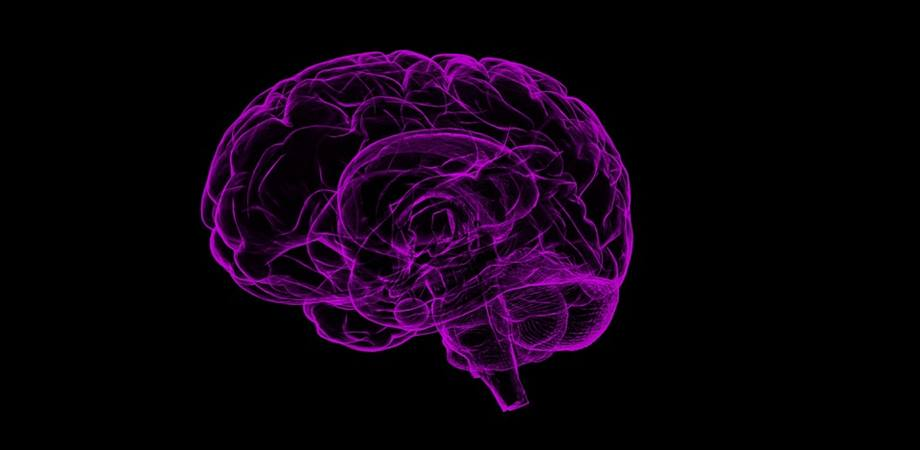 sistemul nervos vegetativ Distonia vegetativa