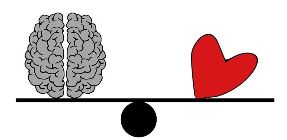 inima sanatoasa creier sanatos
