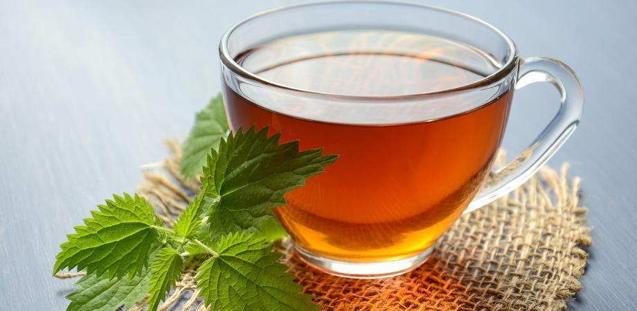 dieta cu urzici contraindicatiile ceaiului