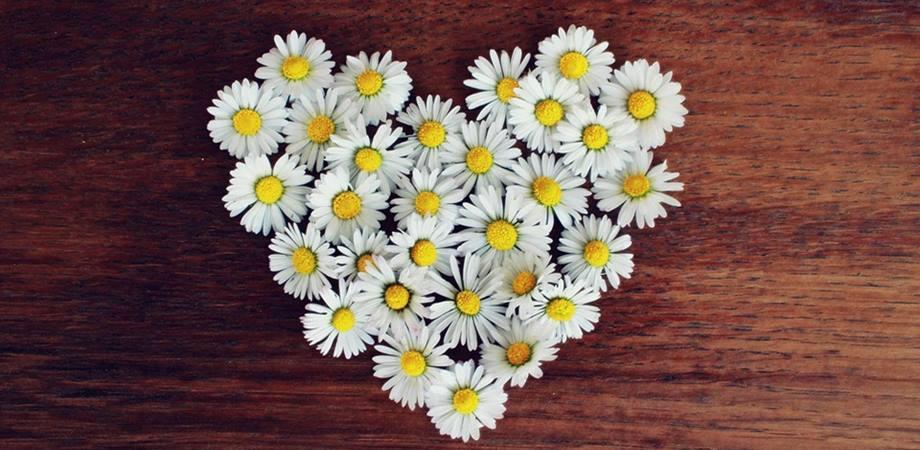 iubirea de sine ce este