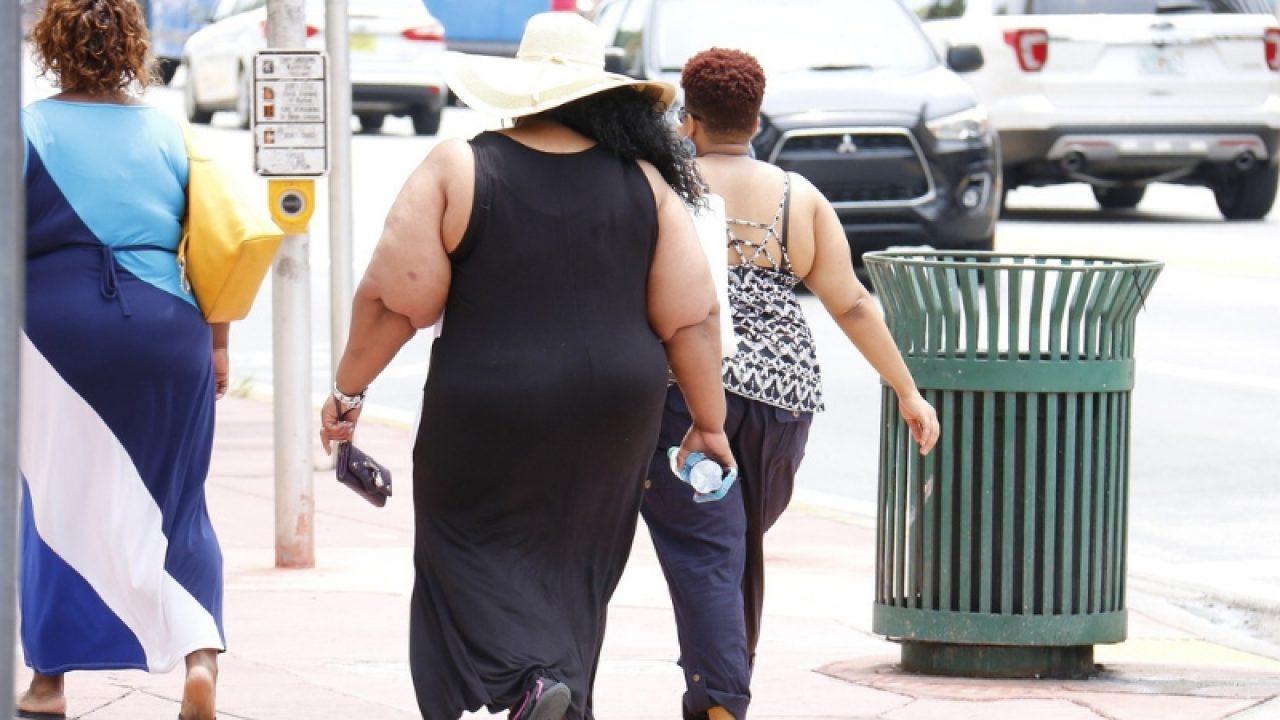 Dieta în obezitate