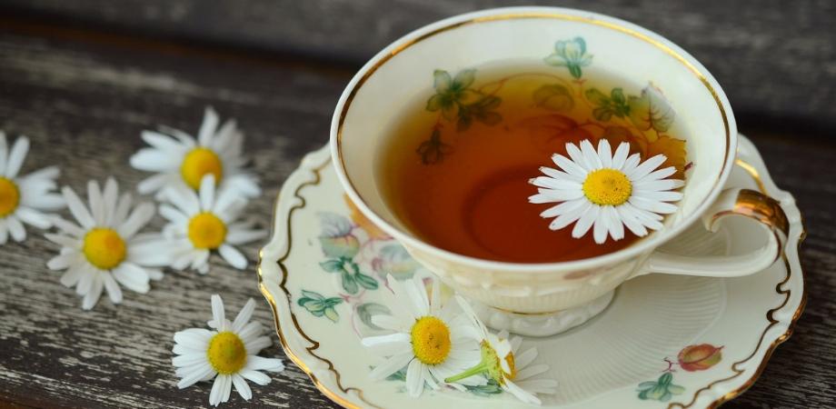 abces dentar si ceaiul de musetel
