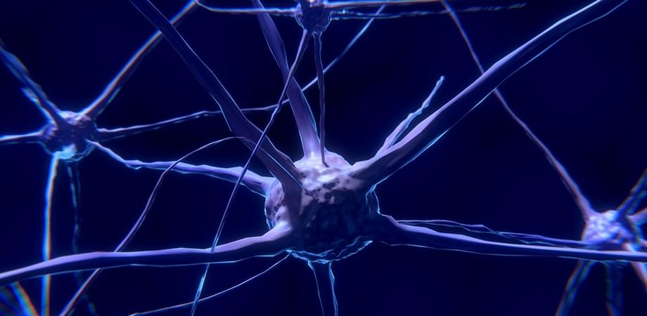 activitatea electrica a creierului