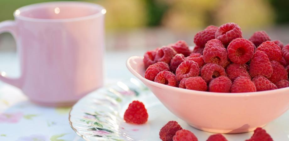 cura de slabire cu fructe de padure