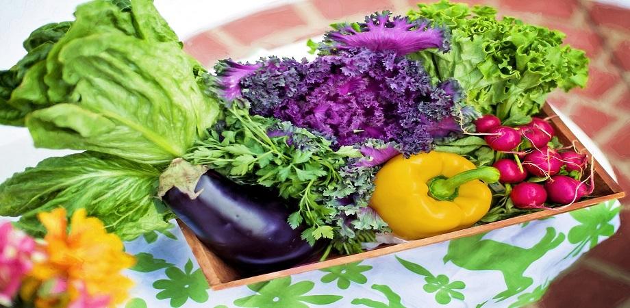 dieta vegetariana dureri articulatii