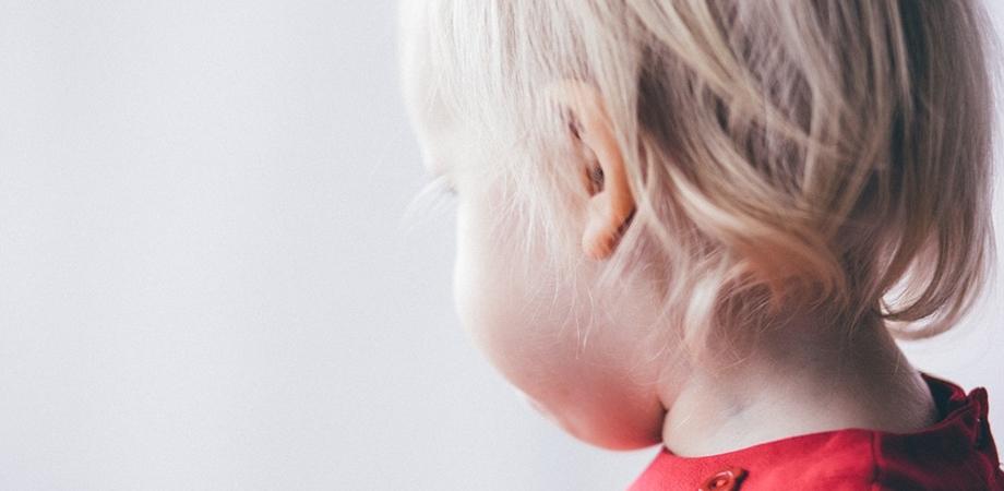 probleme ale urechilor