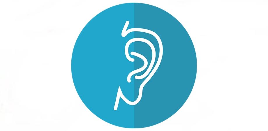 urechea si rolul urechilor