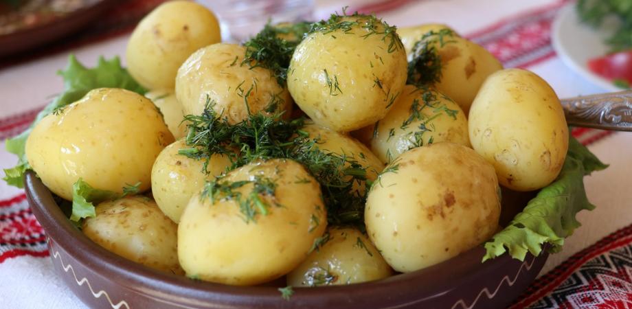 dieta cu cartofi principii