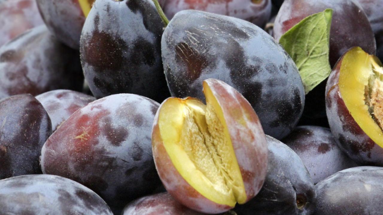 pierderea în greutate prune