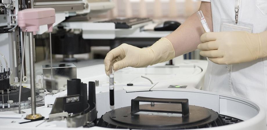 Transplantul de celule stem