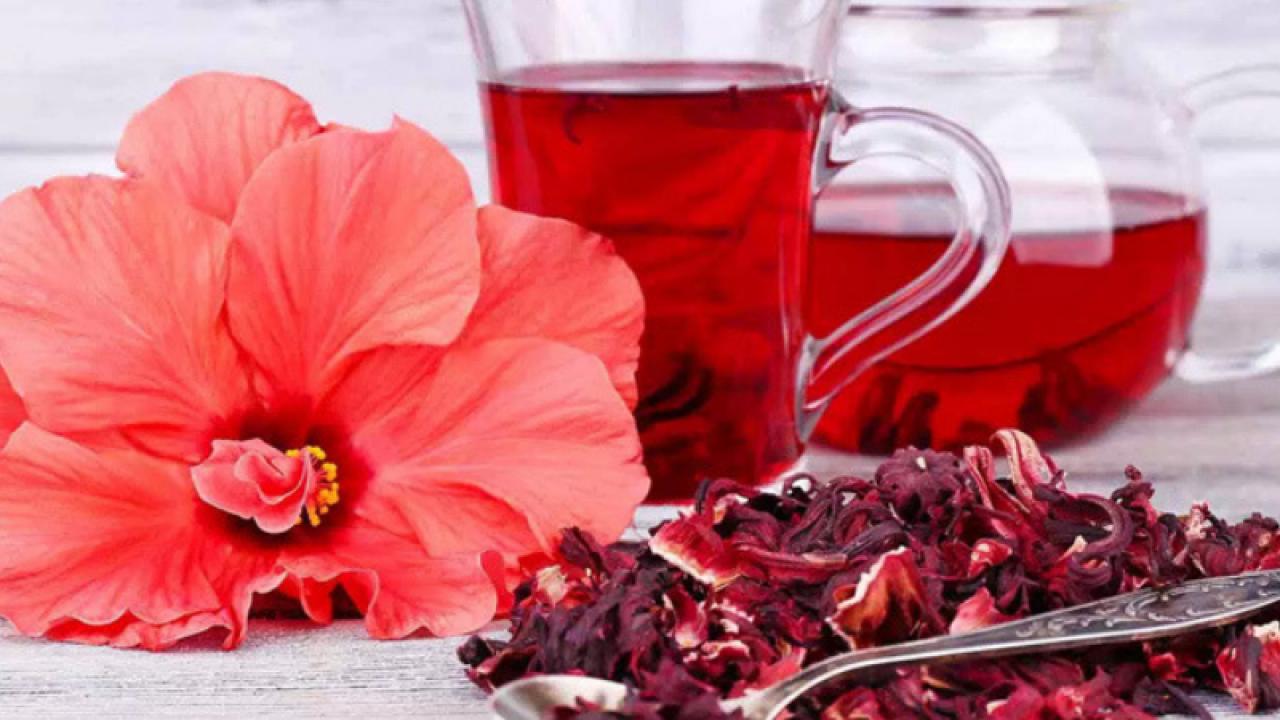 studiu de pierdere în greutate hibiscus)