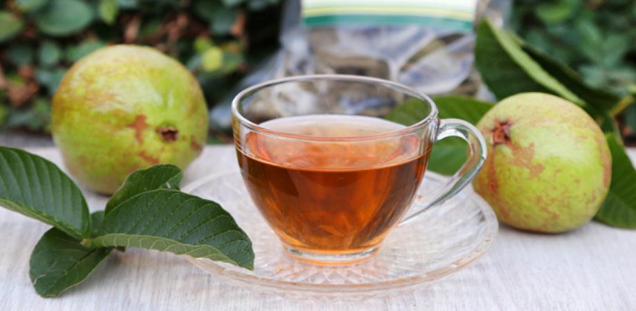fructul guava ceai