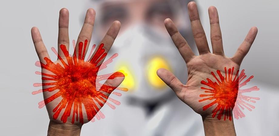 transmitere coronavirus