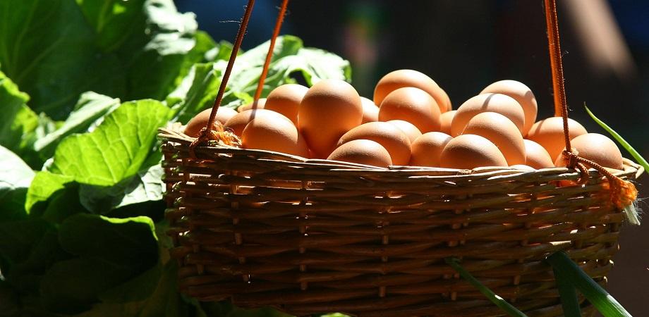 Cauzele alergiei la ou