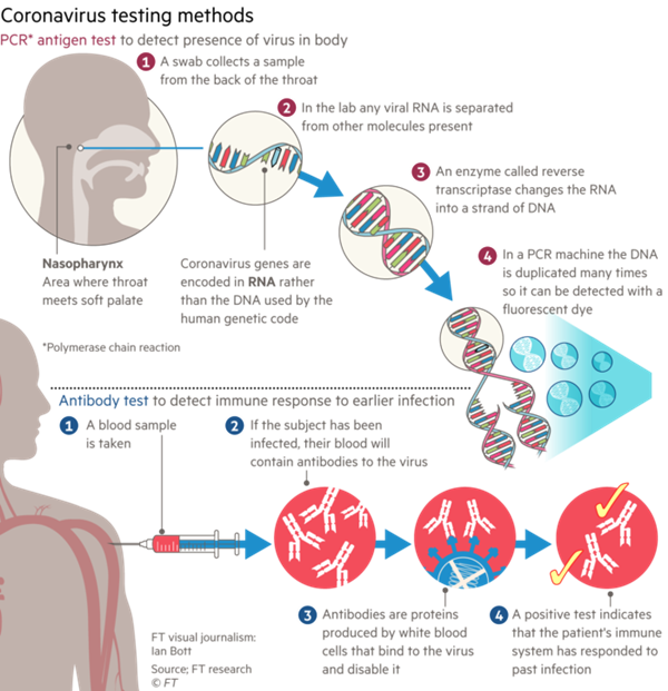 Teste COVID 19 molecular si serologic