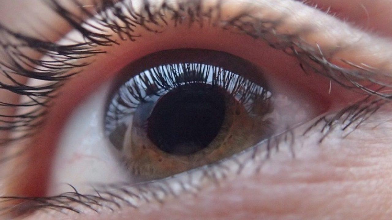 pupile dilatate pentru a testa vederea)