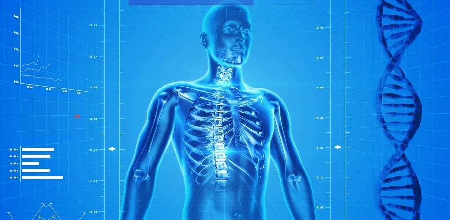 Radiografia cu bariu