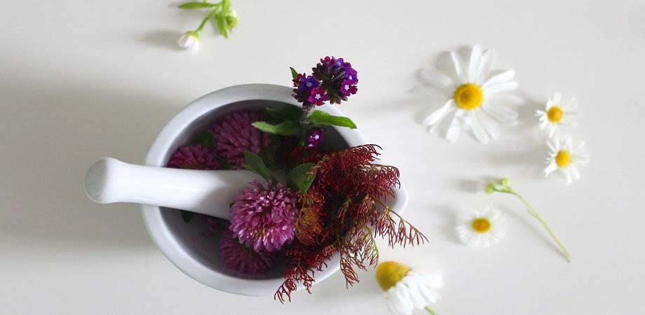 remedii pentru reumatism
