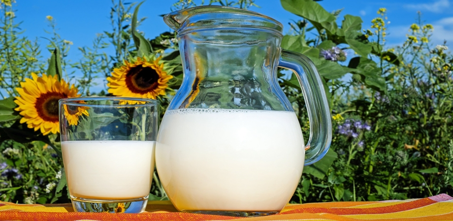 tipurile de lapte din comert