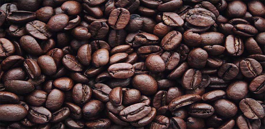 Ce este acidul cafeic?