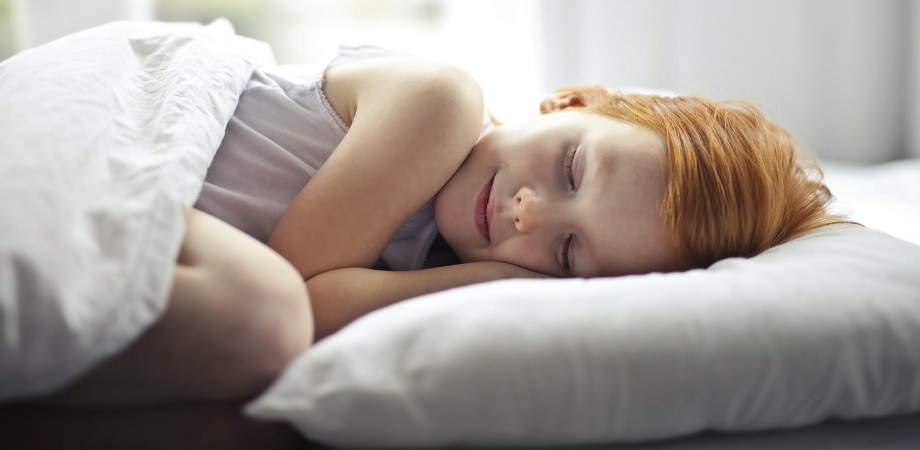 Somnul si creierul
