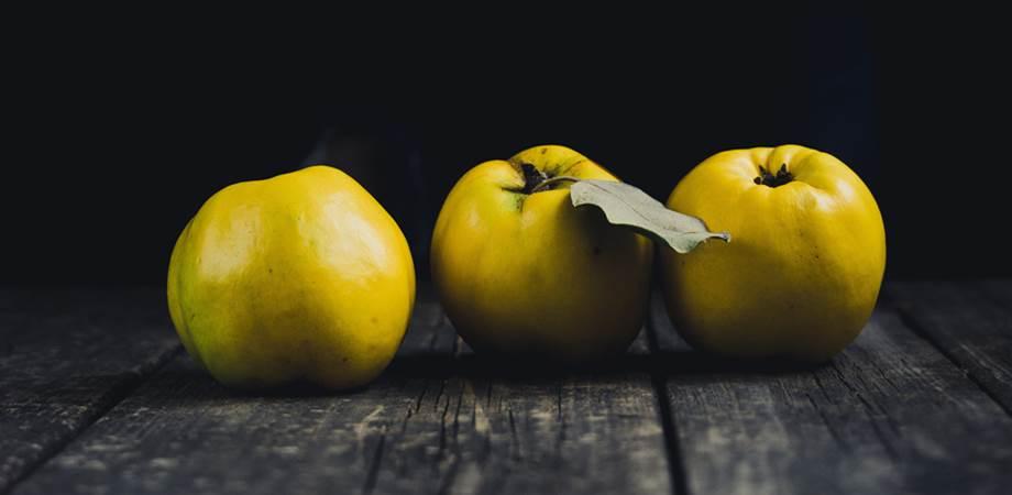 gutui compozitie nutritiva si beneficii