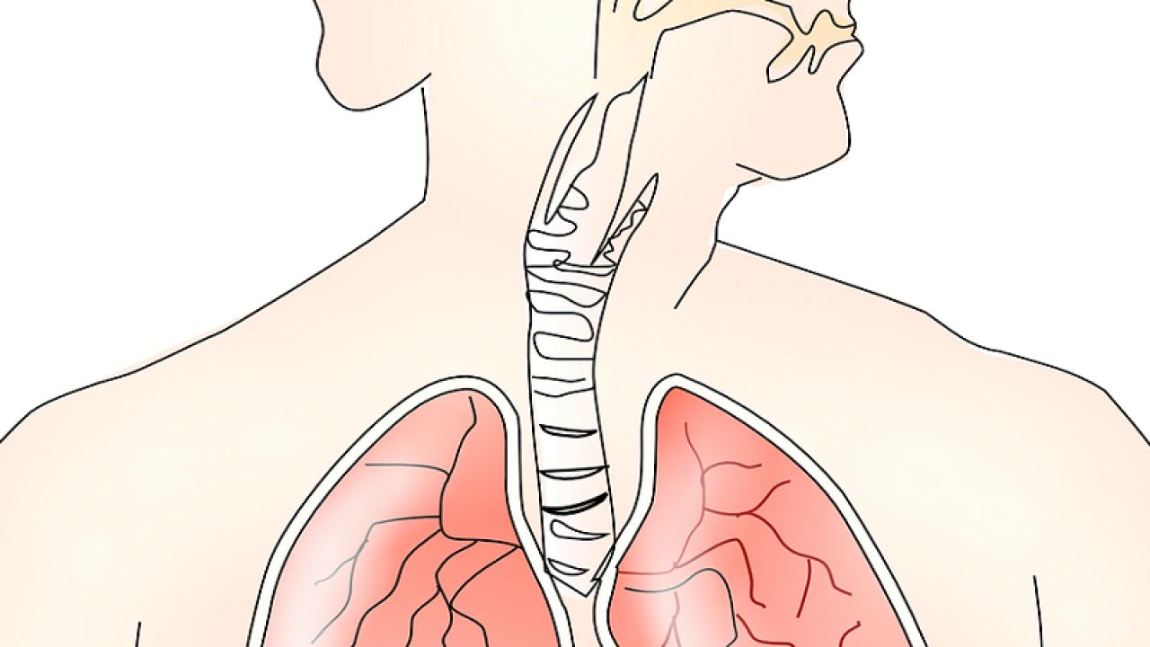poate face o terapie de presă în varicoză tratamentul cu apă rece varicoză