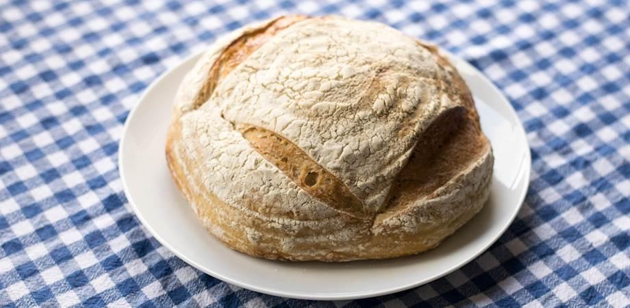 painea cu maia si glutenul