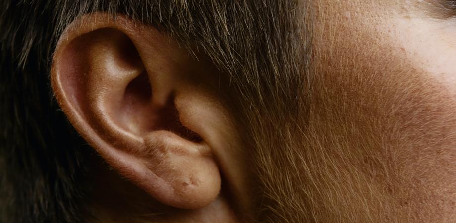 igiena urechilor