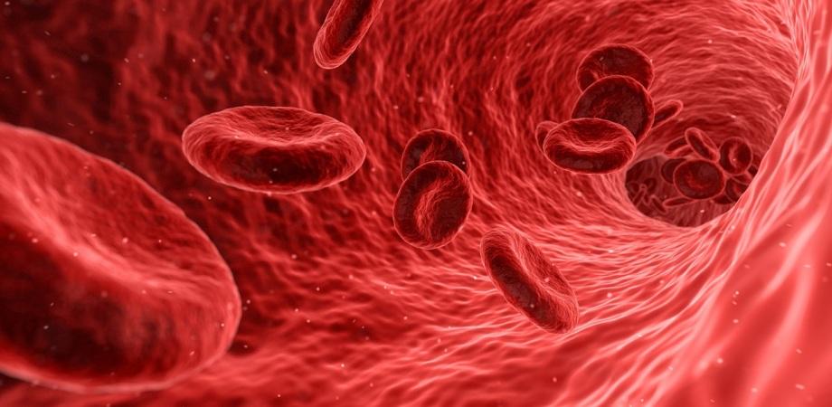 cheagurile de sange in AVC